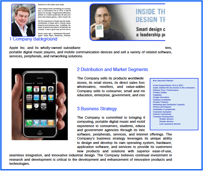 apple inc social strategy essay